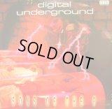 DIGITAL UNDERGROUND / SONS OF THE P  (UK-LP)
