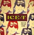 ICE-T / GOTTA LOTTA LOVE  (UK)