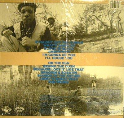 画像2: JUNGLE BROTHERS / STRAIGHT OUT THE JUNGLE  (US-LP)