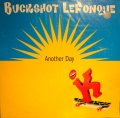 BUCKSHOT LEFONQUE ‎/ ANOTHER DAY