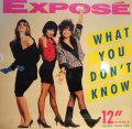 EXPOSE / WHAT YOU DON'T KNOW  (¥500)