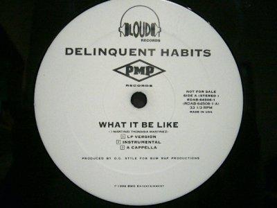 画像1: DELINQUENT HABITS / WHAT IT BE LIKE  (US-PROMO)