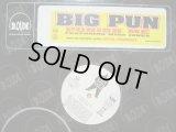 BIG PUN feat..MISS JONES / PUNISH ME