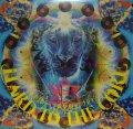 V.A. / DJ BOBO JAMES . HARD TO THE CORE (日本語ラップ黄金期セレクションズ)